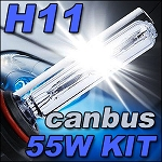 Ignyte Lighting H11 55W CANBUS HID Kit