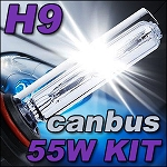 Ignyte Lighting H9 55W CANBUS HID Kit